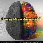 نیمکره های مغزی