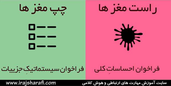 نیمکره های چپ و راست 8